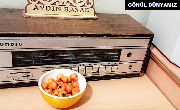 eski-radyo