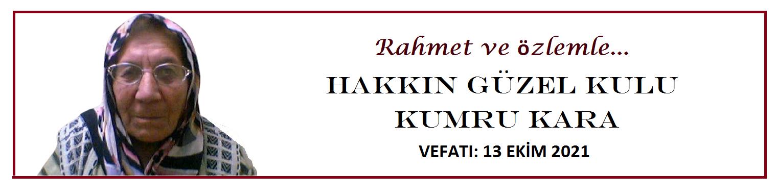https://irfandunyamiz.com/aydin-basar-anneannemin-huzurunda/